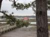 Disney Hilton Head Resort - DVC - Wharf