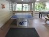 Disney Hilton Head Resort - DVC - Ping Pong