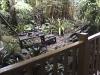 Adventureland, Jungle Cruise, queue, 2002