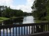 Port Orleans - Landscape